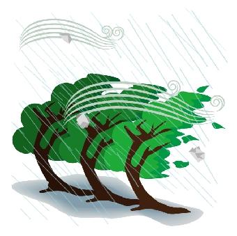倒木の片付け・回収 処分なら 業者/アップターン